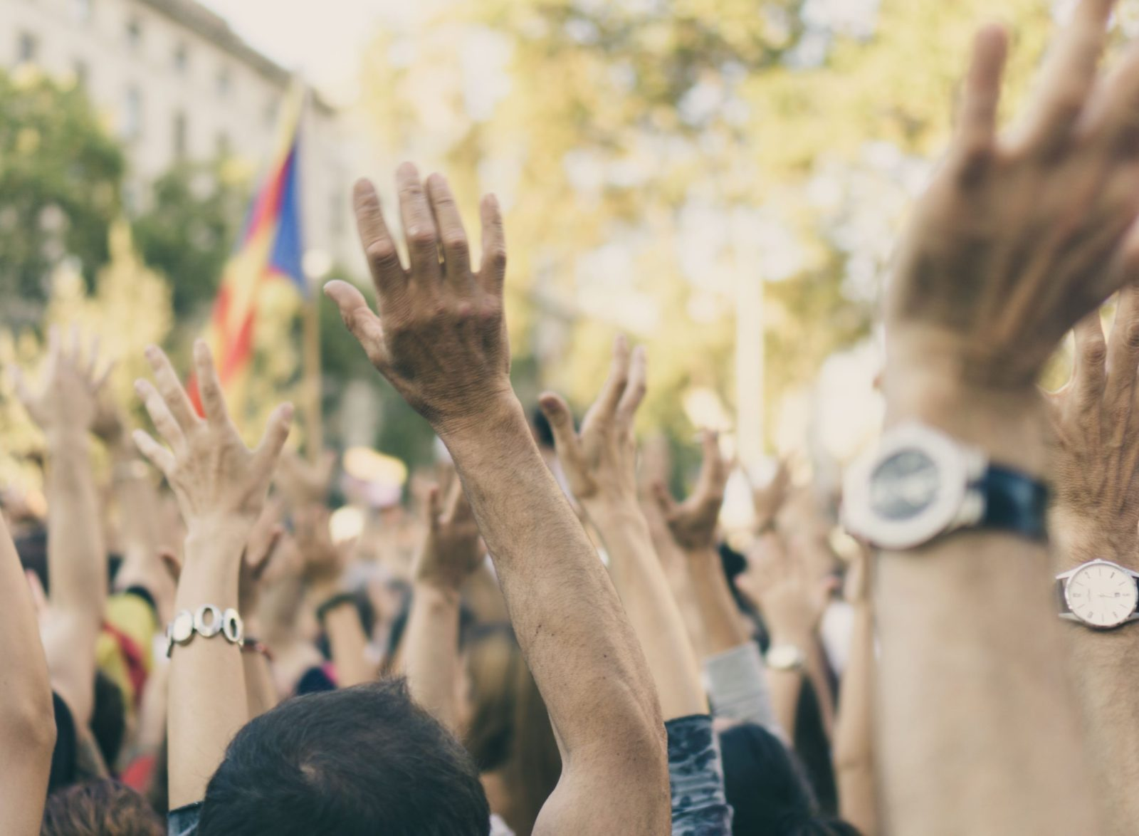 Protest with hands and flags in the air.