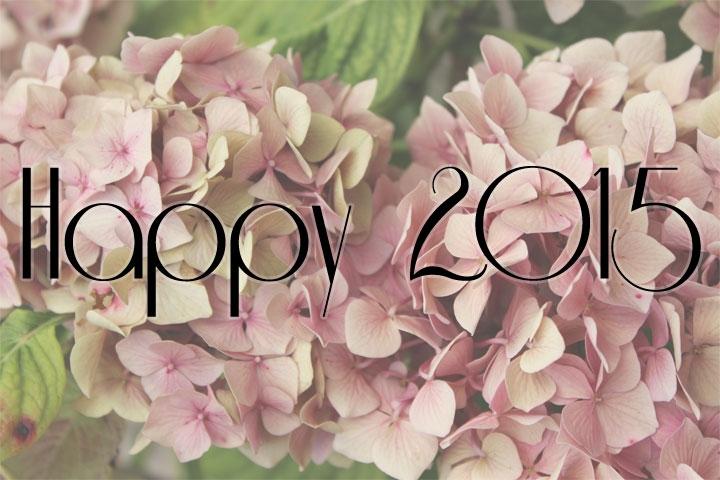 nouvelle année,résolutions,2015,voeux nouvelle année,bonne année