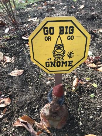 Gnomes 3
