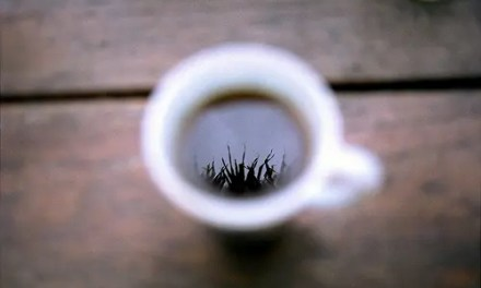 Gracias por los cafés: Junio 2009