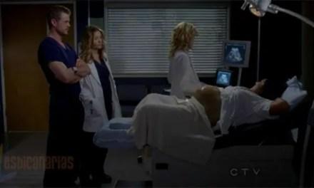 Callie y Arizona resumen de episodio 7×17