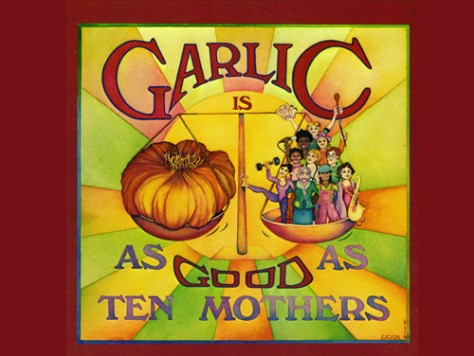 Image result for garlic is as good as ten mothers