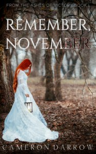 Remember, November by Cameron Darrow