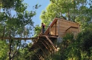 cabanes-dans-arbres-brassac-beatrice-frederic-ducasse-midi-pyrenees-