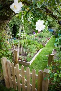 garden-300