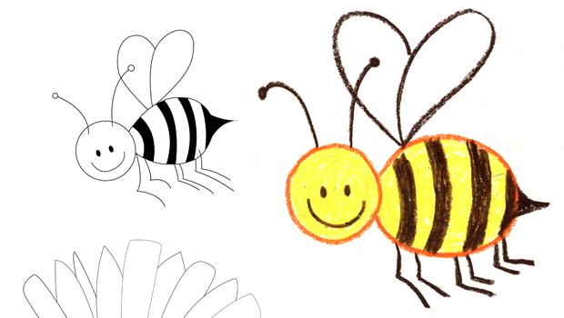 comment dessiner une abeille les carnets de c leste. Black Bedroom Furniture Sets. Home Design Ideas