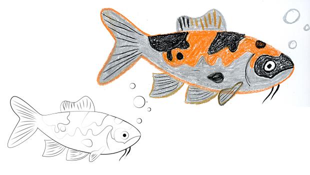 Comment dessiner un poisson ko les carnets de c leste - Dessiner un poisson facilement ...
