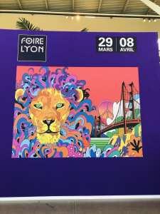 Les Carnets d'une Quadra foire de Lyon 2019