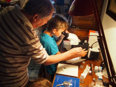 Initiation à l'entomologie au hasard d'une rencontre