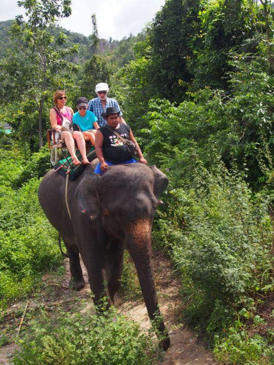 Balade à dos d'éléphant avec Ba et Mamé