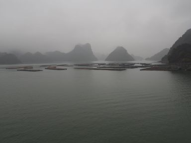La pisciculture
