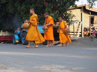 Des jeunes moines bouddhistes de retour de leur tournée de collecte des offrandes