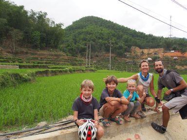 Dans les rizières vertes