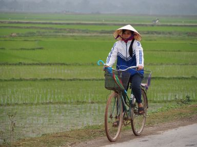 Le vélo est omniprésent au Vietnam ( dans le Nord en tous les cas)