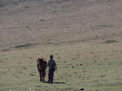 Seule avec mon cheval