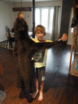 Les ours bruns sont très communs dans cette région