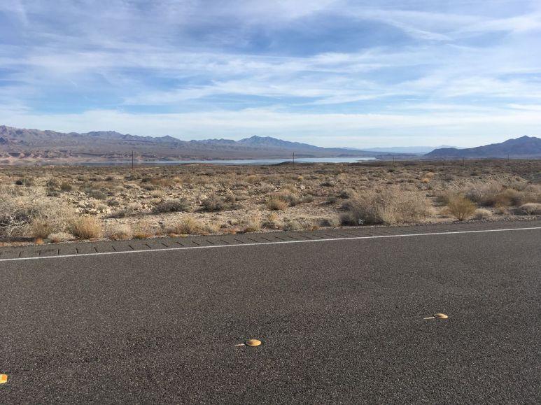 La route et ses buissons secs, au fond le lac Mead