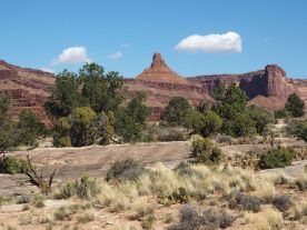 Dans le parc national Canyonlands