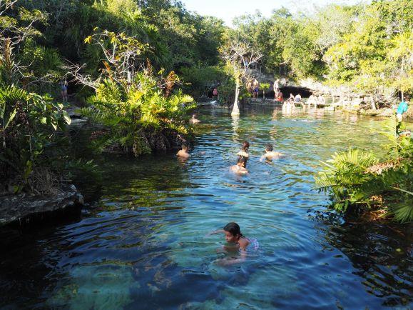Pause fraîcheur dans une Cenote