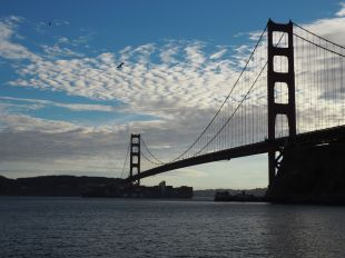 ... Golden Gate