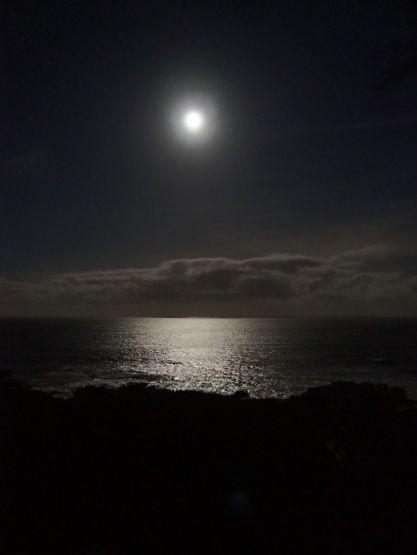 Le Pacifique by night