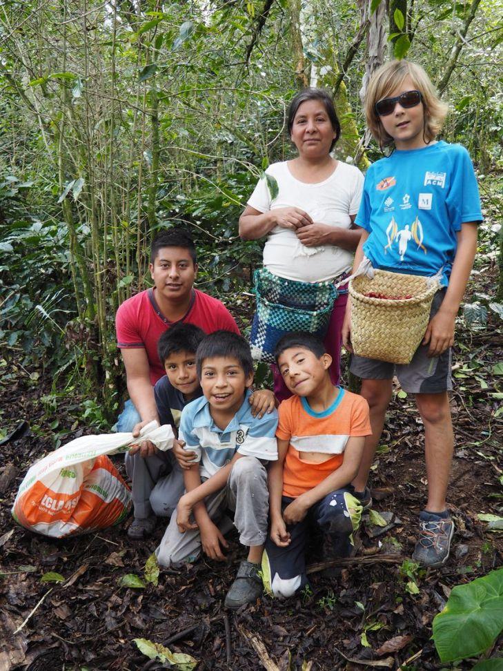 Toute la famille est dans les champs pour récolter !