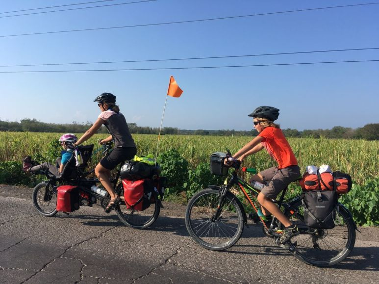 Sur la route des champs de canne à sucre