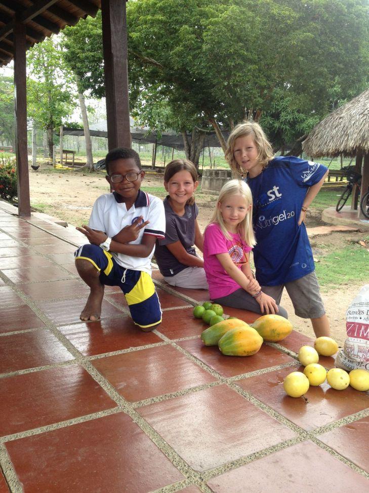Miam des papayes et des maracujas
