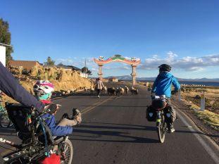 Fin de journée sur les bords du Titicaca: on rentre les moutons