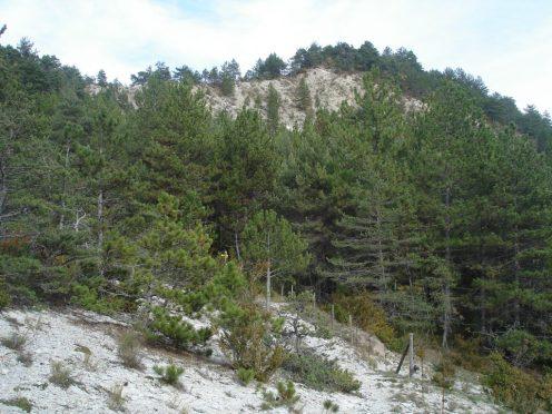 Col de Gras