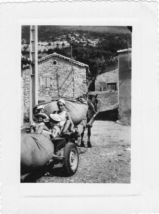 Bourras sur la charrette 1955
