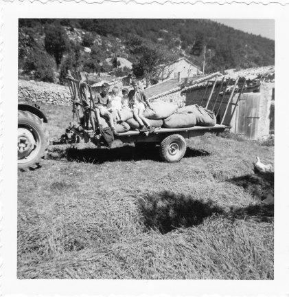 Lavande au Champ du Four 1963