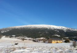 Février 2019 hangar et la neige