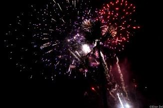 Firework at Hilton