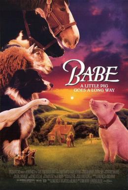 Comment S Appelle Le Petit Du Cochon : comment, appelle, petit, cochon, Cochon-à, Propos, BABE,, COCHON, DEVENU, BERGER, (1995), VILLE, (1998), Leschroniquesduloupblanc