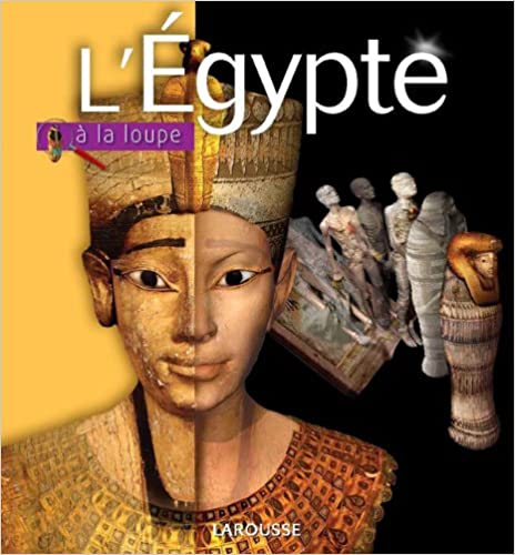 Livre l'Egypte à la loupe