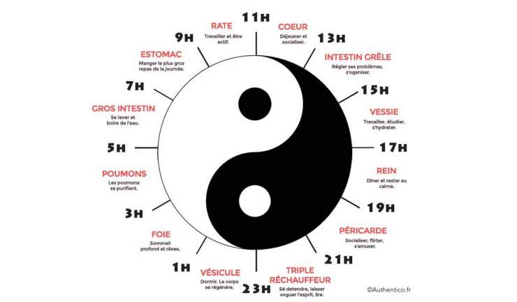 horloge biologique chinoise insomnie