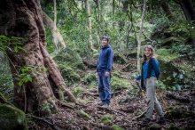 Taka nous montre la forêt