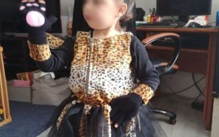 épingle pinterest déguisement jaguar
