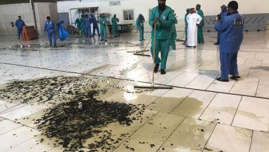 Photo de Vidéo. Des cafards envahissent la Mecque