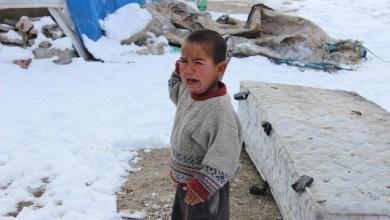 Photo de Syrie : 15 enfants morts à cause de la vague de froid