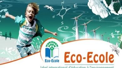 Photo de 146 écoles labellisées «Pavillon Vert» dans la région Casablanca-Settat