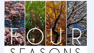 Photo of En version green, les «Quatre saisons» de Vivaldi deviennent les «For Seasons»