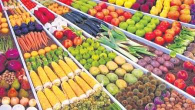 Photo de Exportations agro-alimentaires. 97% de hausse sur la période 2010-2018