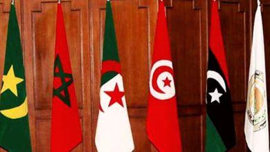 Photo de Intégration maghrébine. Ce qu'en pensent les Marocains