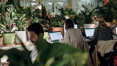 Photo de L'environnement au service de votre productivité