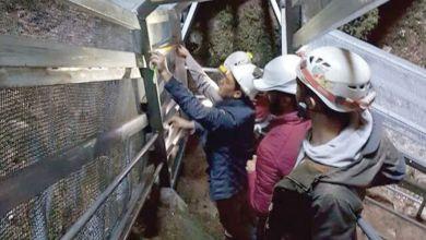 Photo de Fermée depuis 2016, la grotte de Friouato bientôt accessible