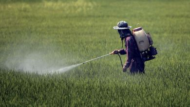 Photo de Droits de douane: les importateurs de pesticides dans le flou