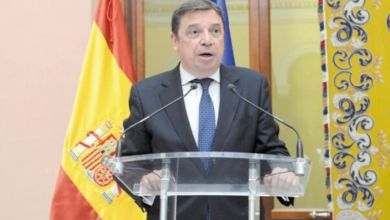 Photo de Les ONG dénoncent l'opportunisme du gouvernement espagnol