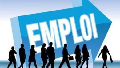 Photo de En chiffres, quel impact du Covid-19 sur l'employabilité des jeunes ?